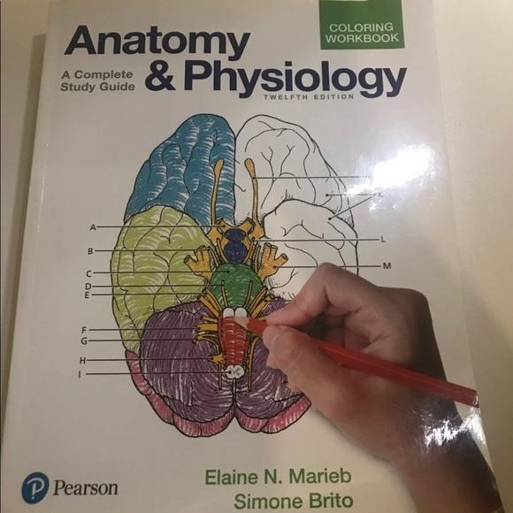 A&P Pearson Coloring Book